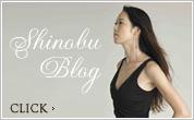Shinobu Blog